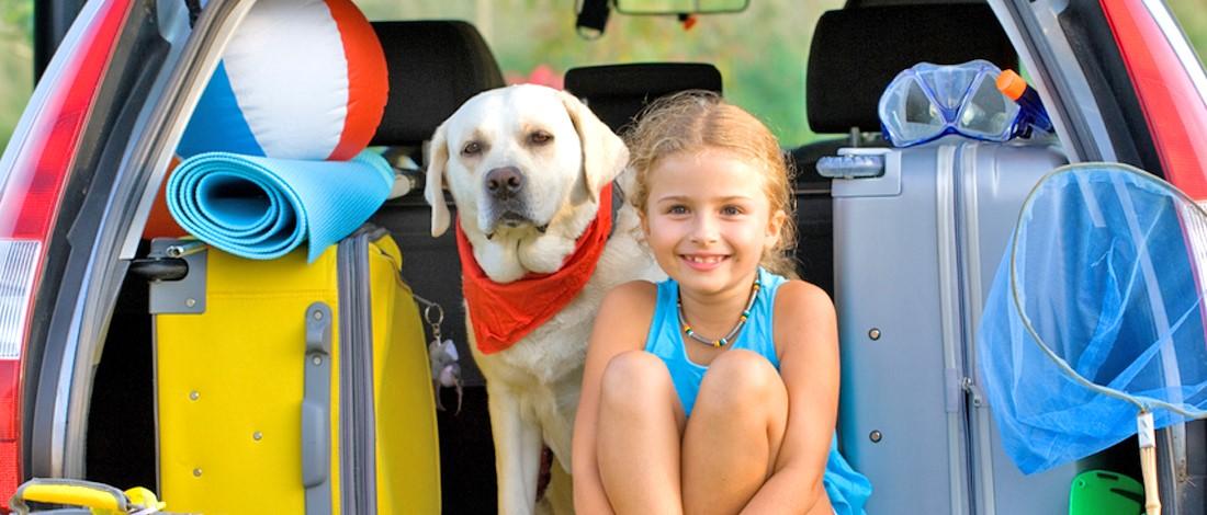 Met de hond op vakantie? Bekijk onze tips!
