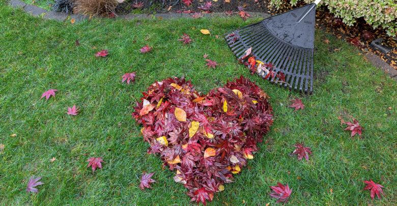 Tijd voor de herfst! Zijn jouw huis en tuin al herfstklaar? | Verzekeruzelf